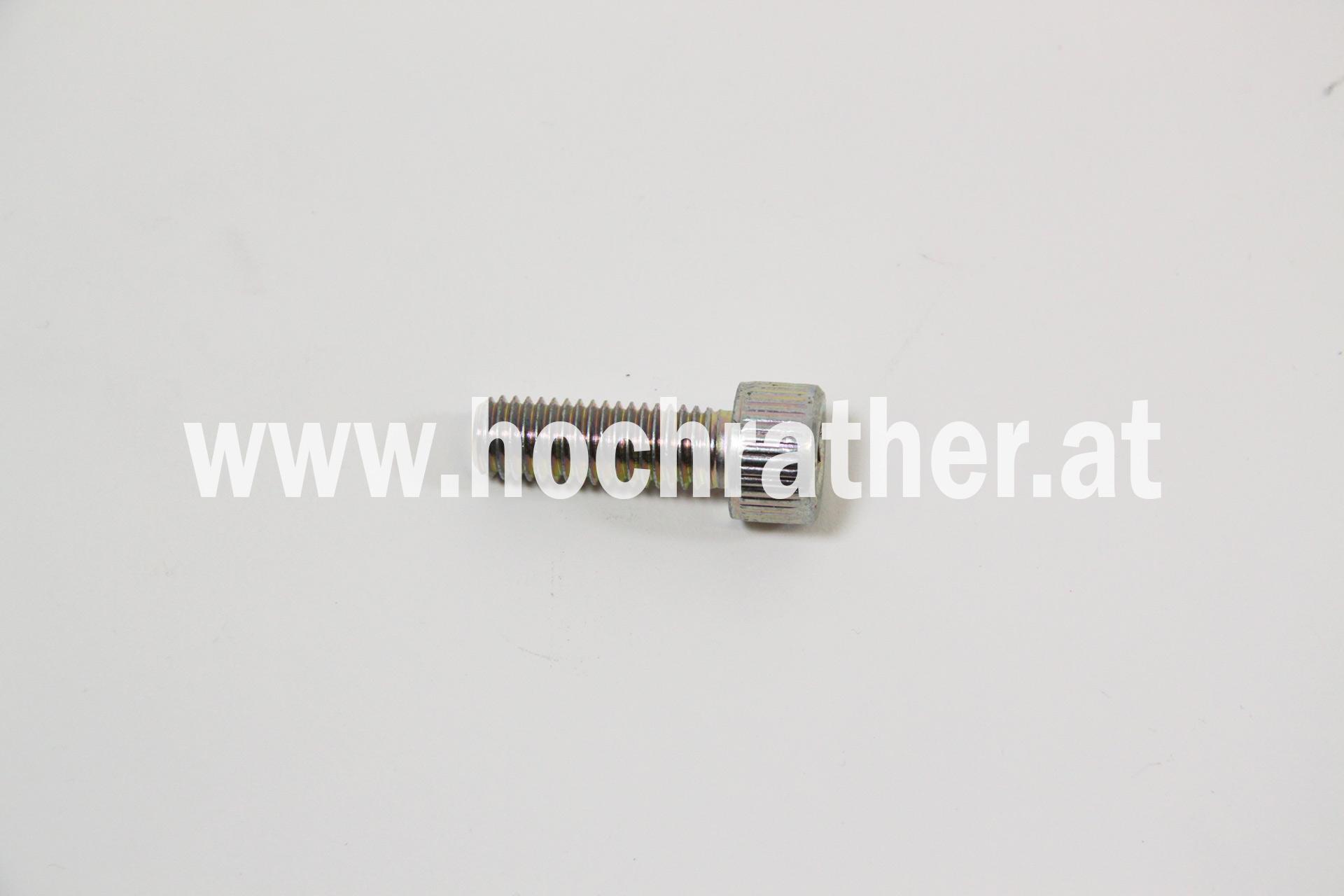 Schraube (14420231)  Case