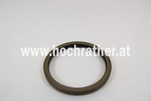 Dichtring (247877A1)  Case