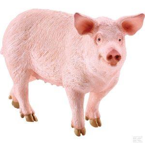 Schwein (13782Sch) Kramp