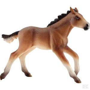 Mustang Fohlen (13807Sch) Kramp