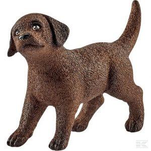 Labrador Retriever Welpe (13835Sch) Kramp