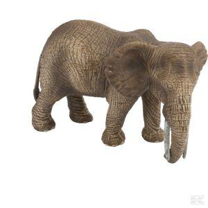 Afrikanischer Elefant, Kuh (14761Sch) Kramp