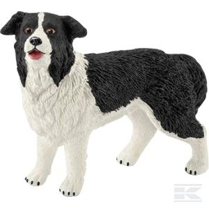BORDER COLLIE (16840SCH) Kramp