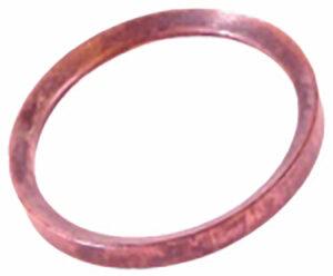 Dichtring Steyr Vorkammer (500099428) Umlauf